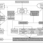 Fisiopatología, relevancia e historia natural de la disfagia orofaríngea en ancianos