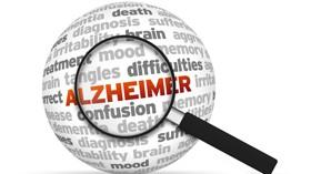 A estudio las similitudes entre el desarrollo cerebral y el envejecimiento