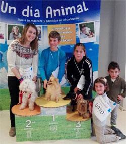 Geriatricarea animalterapia Sanitas Mayores
