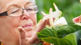 Sanitas Residencial El Viso organiza un taller terapéutico de botánica artística