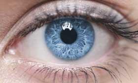 Geriatricarea Alzheimer examen ocular vergencias