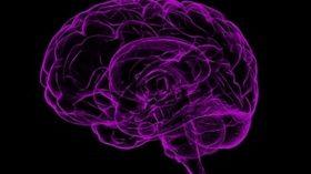 El 16% de los españoles sufre algún tipo de enfermedad neurológica