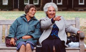 geriatricarea envejecimiento Alzheimer Sanyres
