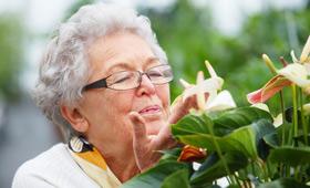geriatricarea primavera patologias respiratorias Sanitas Mayores