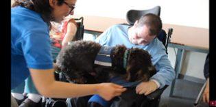 Vídeo: Usuarios del CAMF de Leganés participan en una terapia asistida con animales