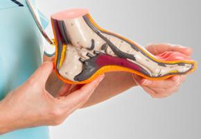 geriatricarea FEDOP reforma prestaciones ortoprotésicas