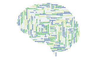 Estudio alzheimer Fundación ACE