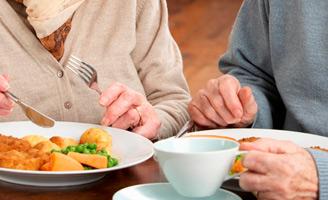 geriatricarea nutricion alzheimer