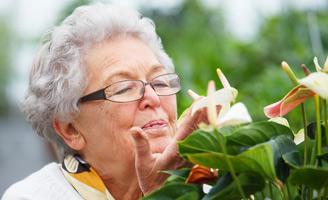 geriatricarea persona con alzheimer