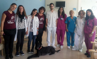 geriatricarea terapia asistida con perros Clece