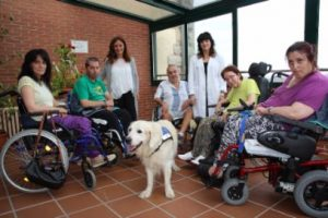 geriatricarea terapia con animales