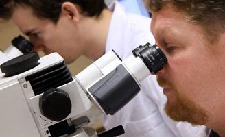 geriatricarea Immungenetics tietilperazina alzheimer