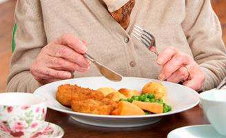 geriatricarea menús residencias nutricional deficiente