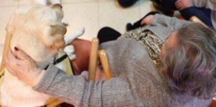 La Comunidad de Madrid implanta Terapias Asistida con Animales en sus centros de mayores