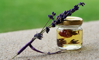 geriatricarea Igurco estimulación sensorial memoria olfativa