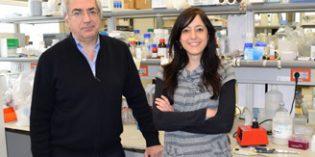 Identifican los mecanismos por los que la neuroinflamación provoca alteraciones cognitivas y motoras