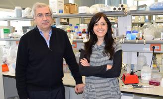 geriatricarea neuroinflamación Laboratorio de Neurobiología Centro de Investigación Príncipe Felipe