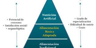 Seguridad de las dietas con textura modificada: peligros biológicos y gestión de alérgenos.