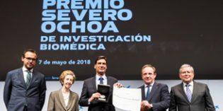 Manuel Serrano, premio Severo Ochoade Investigación Biomédica por su trabajo sobre envejecimiento y cáncer