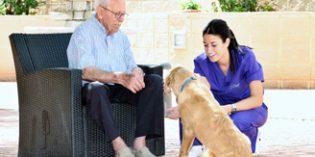 Envejecimiento activo basado en la Atención Centrada en la Persona