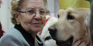 Ballesolimplementa la Terapia Asistida con Animales y la magnetoterapia en más centros