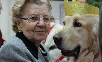 geriatricarea ballesol Terapia Asistida con Animales