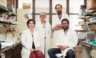 geriatricarea envejecimiento y cancer