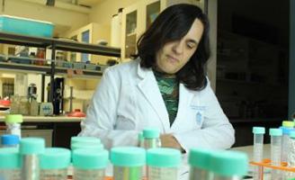 geriatricarea infarto cerebral en CARE Chile