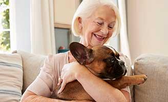 geriatricarea mascotas mayores Kiwoko