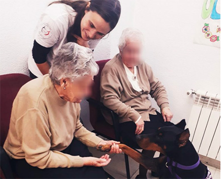 geriatricarea terapia asistida con animales Alzheimer