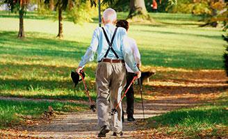 geriatricarea envejecimiento activo