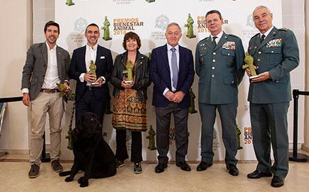 geriatricarea Premios Bienestar Animal