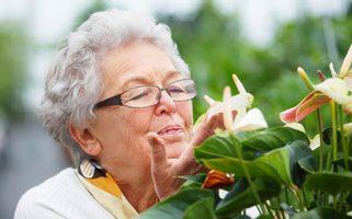Envejecer activamente: motivaciones y necesidades de las personas mayores