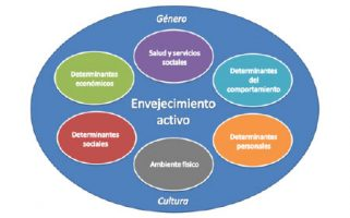 El envejecimiento activo, en contrapunto al envejecimiento patológico, resalta aspectos positivos y del desarrollo en el ciclo vital