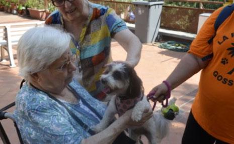 geriatricarea La Verneda terapia con animales