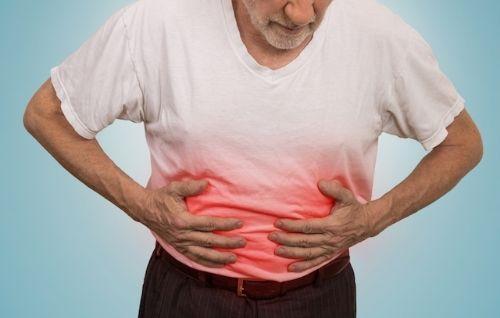 geriatricarea microbiota intestinal