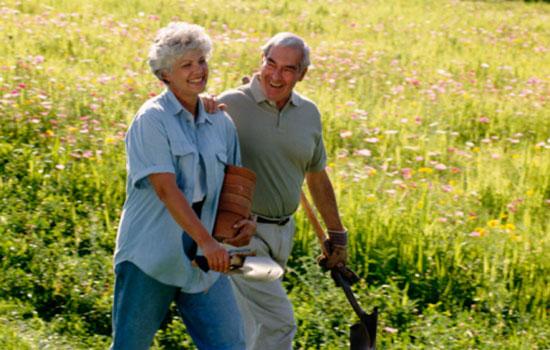 La importancia del Equilibrio Ocupacional en personas mayores