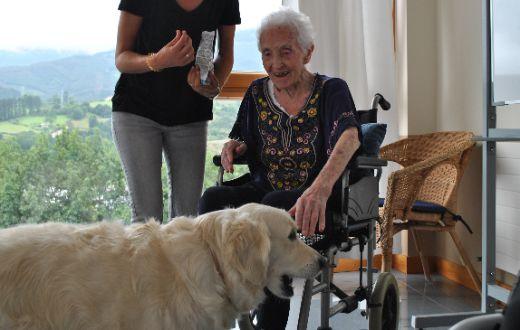 geriatricarea terapia asistida con animales