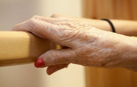 geriatricarea terapia ocupacional alzheimer