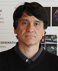 geriatricarea Fernando Maestu. Conectoma Humano