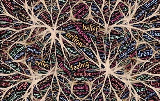 geriatricarea actividad cerebral