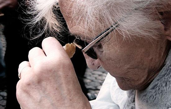 geriatricarea Entrenamiento en memoria