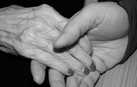 geriatricarea servicios sociales