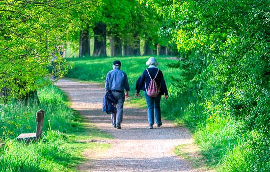 geriatricarea caidas ejercicio fisico