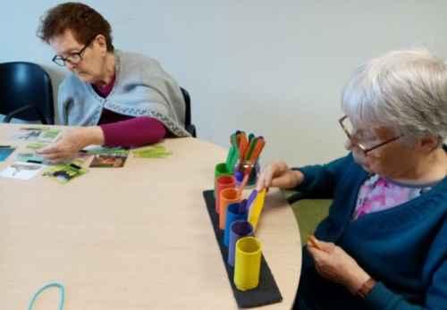geriatricarea actividades manuales Albertia