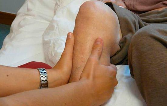 geriatriara Fisioterapia demencias