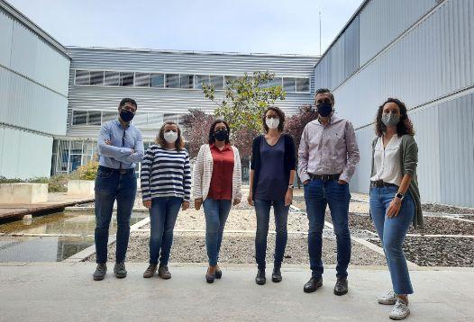 Geriatricarea equipo de investigadores alivio del dolor con nanogeles