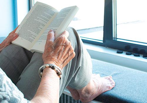 geriatricarea Plan de Vivienda CENIE Sabine van Erp Pixabay