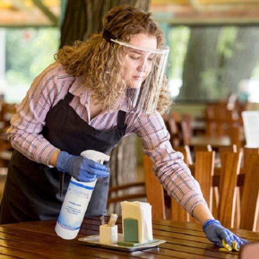 Geriatricarea desinfectantes Sanosil