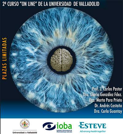 geriatricarea-Curso-Neuro-Oftalmologia